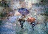Сезонът на дъждовете 6 ; comments:80