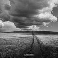 Пейзаж в бяло и черно ; Comments:24
