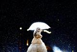 Heavy rain ; comments:9