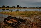 okavango delta ; comments:19