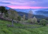 Пролет в Родопите ; Comments:10