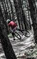 Biker`s ; comments:4