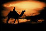 Залез в пустинята Тар(Индия) ; comments:51