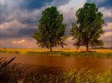Природата на България! ; comments:53
