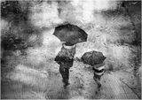 Сезонът на дъждовете 11 ; comments:43