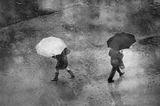 Сезонът на дъждовете 12 ; comments:48