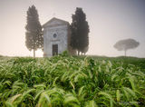 Val D`orcia ; comments:20