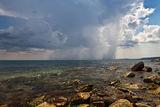 Летен дъжд... ; comments:49