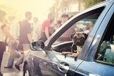 най-добрият приятел на човека....и в шофирането .. ; comments:45