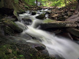Ricketts Glen #15 ; Comments:17