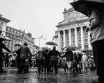 Дансing in the Rain ; Comments:80