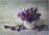Спомен за пролетта 1 ; comments:34