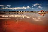 Солничен пейзаж... ; comments:99