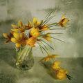 Спомен за пролетта 3 ; comments:67