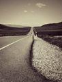И пътят сам ще те намери… ; comments:40