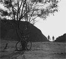 Велосипед, дърво и две грации ; comments:80