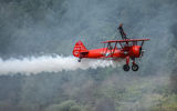 The Wingwalker ; comments:28