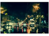 Sofia Rain Drive ; comments:12