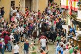 Entrada de Toros y Caballos-Segorbe 2013 ; comments:63