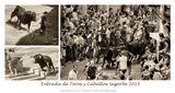 Entrada de Toros y Caballos-Segorbe 2013 ; comments:62