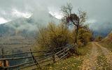 Идва есента ... ; comments:47