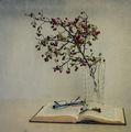 Приказки под шипковия храст ; comments:31