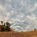 Къща под облаците ; comments:77