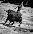 Entrada de Toros y Caballos-Segorbe 2013 ; comments:93