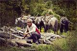 Не е лесно в Балкана ! ; comments:62