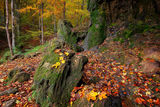 Есенно... ; Comments:34