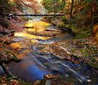 Златна река.. ; comments:118