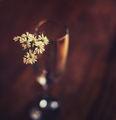Есен.... ; comments:13