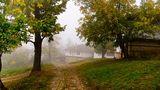 Боженци в мъгла... ; Comments:13