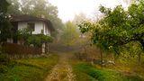Боженци в мъгла... ; Comments:16