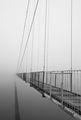 Мост към с.Лисиците ; comments:39