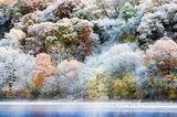 Първи сняг ; comments:67