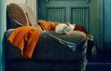 След всички бели, дето само аз сътворих - викам да спим! ; comments:75