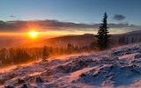 Изгревът и студът ; Comments:51