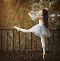 ballerina ; comments:110