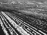 снежни . линии ; comments:13