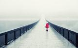 В мъглата ; comments:67