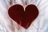 Много любов през новата година! Да ви е честита, да сте живи и най вече здрави! ; comments:12