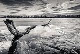 Зима в Нова Англия ; Comments:16
