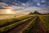 Val d`orcia ; comments:50