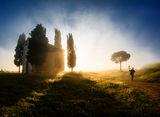 Тоскана ; Коментари:25