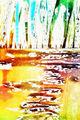 Слунчев път, сред храсти и треви ; Comments:3