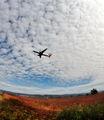 Landing ; comments:22