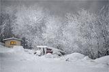 Снежно... ; comments:15