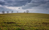 Пролетно ... ; comments:31