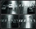 CCTV зебра ; Comments:10